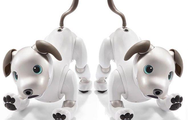 Sony bringt Neuauflage seines Roboter Hund Aibo auf den Markt